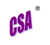 CSA-WordArt-Wealth-management-services-sarasota
